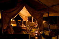 Luxury Tent Safari in Africa
